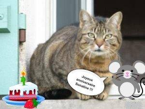 Hier c'était l'anniversaire de Sonatine dans ma vie 431154_3053165542184_1654675101_2597191_236774506_n-300x225